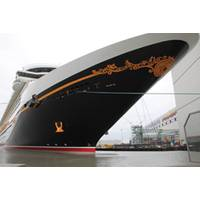 "Disney Fantasy was delivered by Germany's Meyer Werft, the ""Cradle of Cruise Ships."""