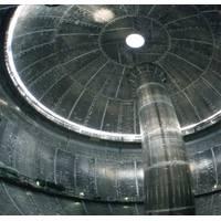 Inside a moss tank (Photo courtesy of LR)
