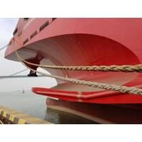 Navimag Ferries' new ship Esperanza (Photo: Wärtsilä)