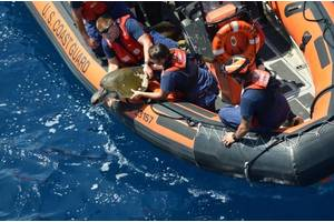 Photo: Coast Guard Compass